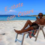 E-State (r)